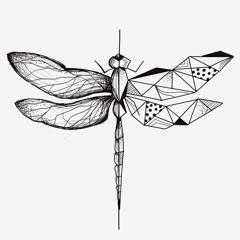 da-libellule